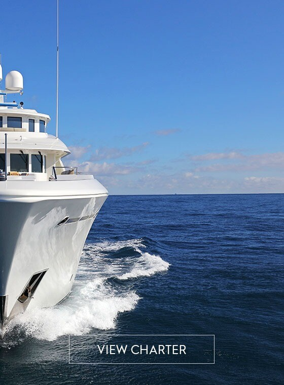 New Charter Yachts